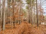 walking trail 3